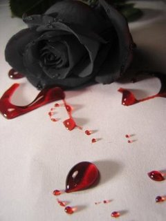 http://3.bp.blogspot.com/-Z0bAJGPSt54/T1bE4MYJBII/AAAAAAAABlM/sTYv7r3AyD4/s1600/rosas.jpg
