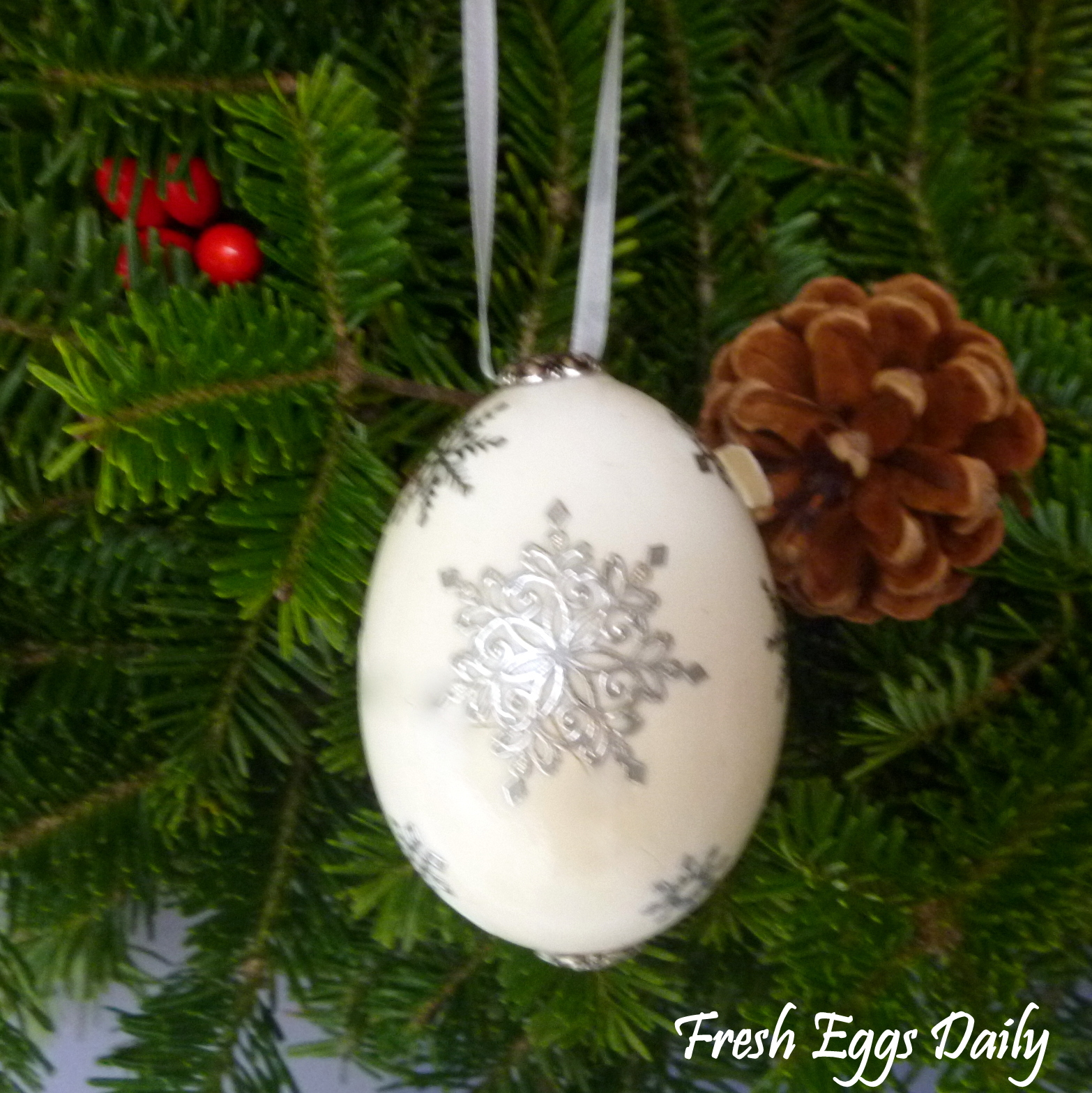 Blowing Out Eggs For Crafts, Christmas Ornaments & Holiday