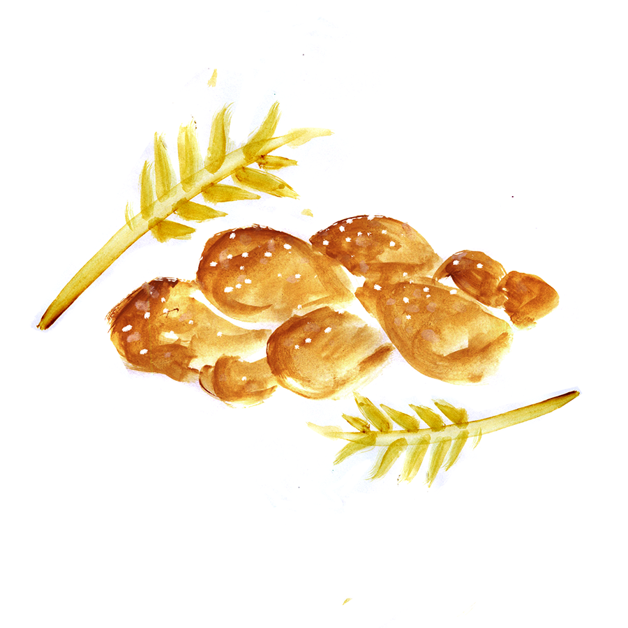 Favorite Challah, Shabbat, Lauren Monaco Illustration