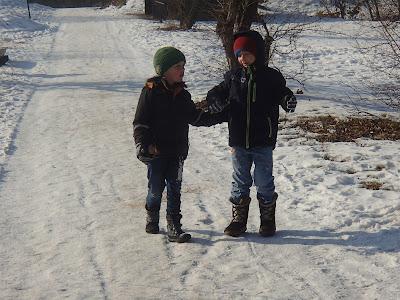 grzyby w styczniu, grzyby nadrzewne, spacer w zimie, zimowy las, smog w Krakowie