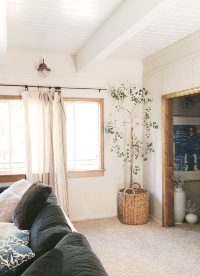 living room decorating ideas, indoor tree in basket