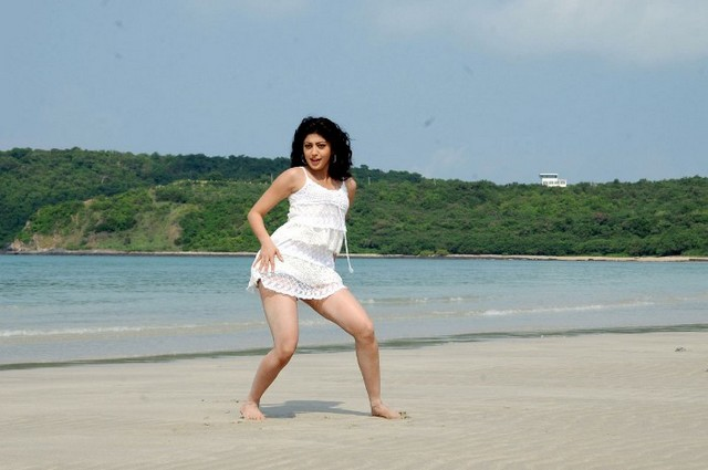 Kannada actress Pranitheea spicy stills