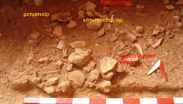 Evidence of ritual human sacrifice in the Mycenaean palace of Kydonia, Crete