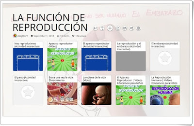 https://www.pearltrees.com/alog0079/la-funcion-de-reproduccion/id18499979
