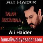 http://www.humaliwalayazadar.com/2012/11/ali-haider-nohay-2009-2013.html