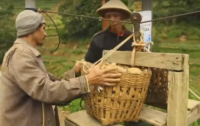 Panen kentang, Dieng, Jawa Tengah.