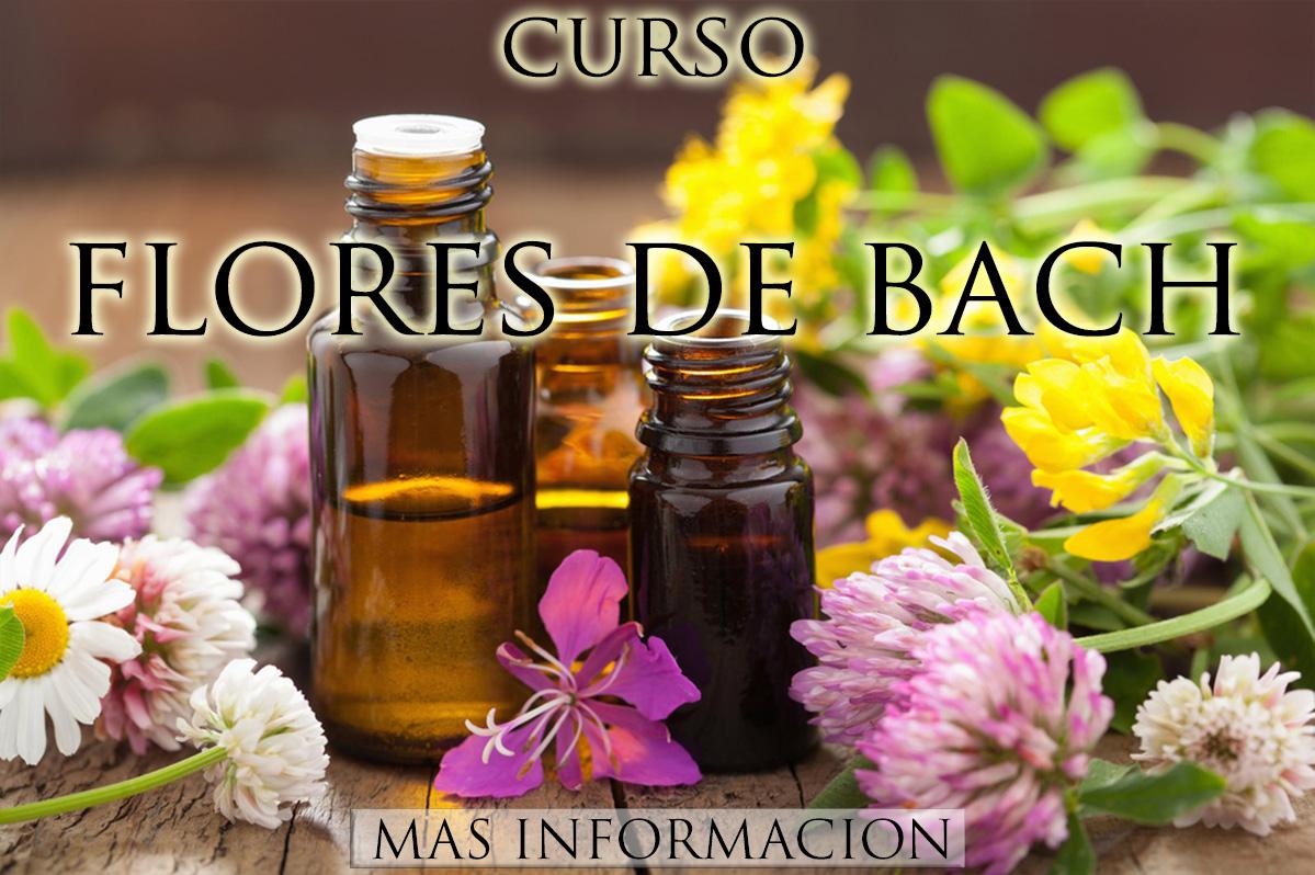 http://www.almasaranterapiasycursos.com/2018/02/CURSO-12-ESTRELLAS-DE-MARIA.html