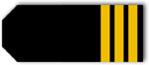 ► Rangos de oficiales a bordo de un barco de crucero - ¿Los conoces? Primer_Oficial