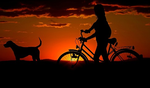 pixabay.com/en/woman-girl-bike-sunset-walk-2711279