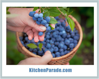 Blueberry Recipes, sweet to savory ♥ KitchenParade.com
