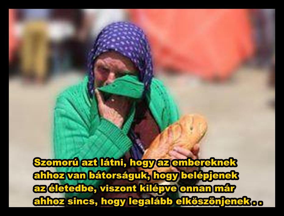 anyáknak versek idézetek versek és idézetek: Egy anya, akit a gyerekei elüldöztek otthonról.