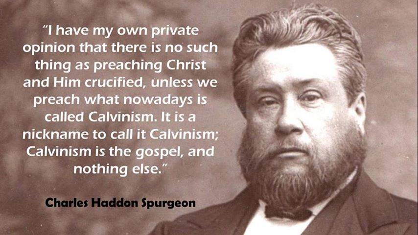 calvinism was founded by john calvin religion essay Calvinism was a term first used by calvin's opponents calvinism has become a widely  on john calvin's leadership calvinism was distinctive  essays and.