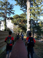 松林を走りぬけるランナー