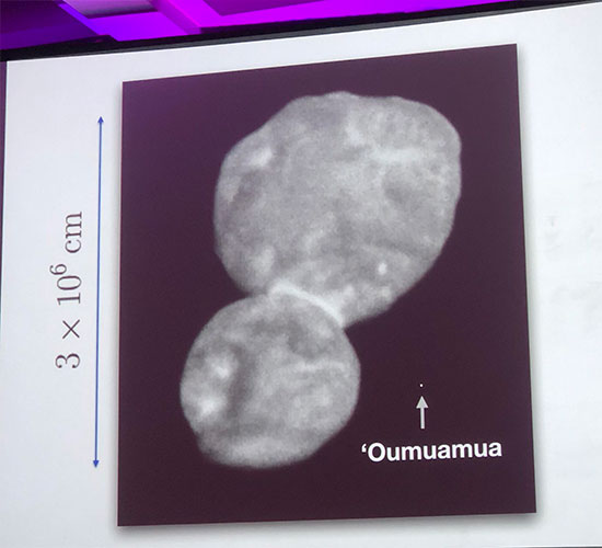 Note Oumuamua's size compared to the recent New Horizon's visit to MU69 (Source: Greg Laughlin, Yale U, at 233rd AAS meeting)