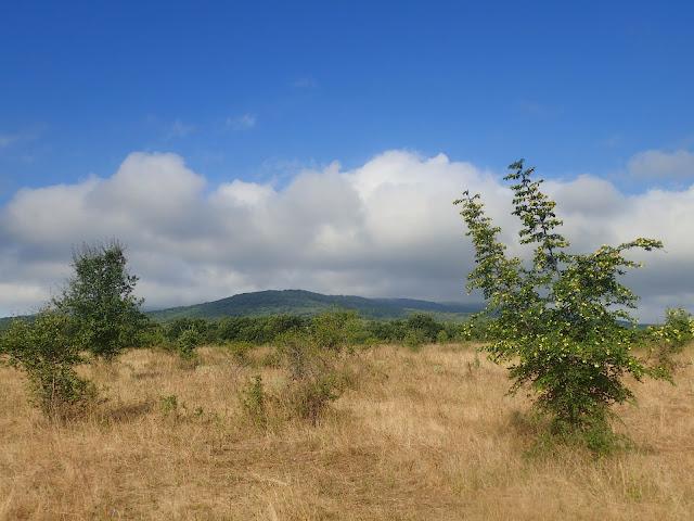 Bułgarskie krajobrazy (południowa część kraju)