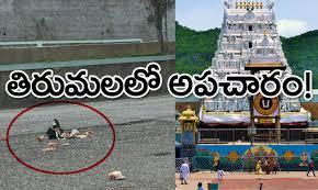 తిరుమలలో అపచారం | TIRUMALA TIRUPATI | TTD | Tirumala Tirupathi Devastanams | Ebooks Tirumala | Saptagiri | Mohanpublications | Granthanidhi | Bhakthipustakalu | Bhakthi Pustakalu | Bhaktipustakalu | Bhakti Pustakalu | BhakthiBooks | MohanBooks | Bhakthi | Bhakti