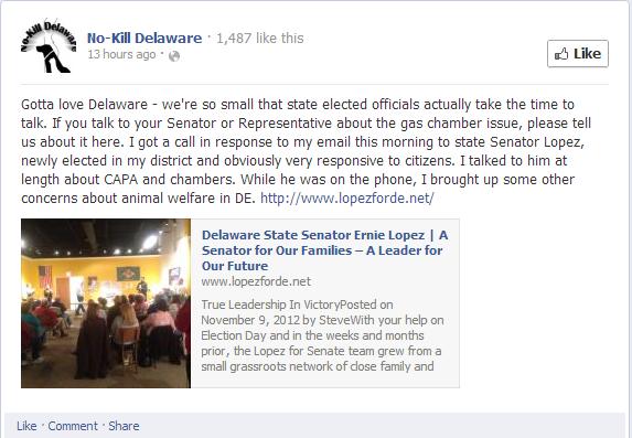Delaware CAPA: February 2013