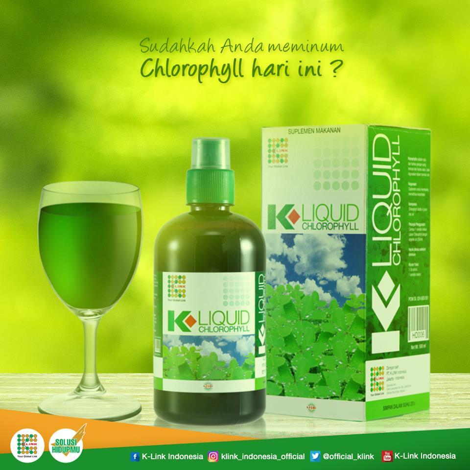Klorofil Chlorophyll K Liquid Klink Daftar Harga Terkini Dan 500ml Link Memiliki Banyak Produk Berikut Pengobatan Penyakit Typus Dengan