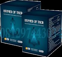 hammer of thor samarinda antar gratis 081297443034 hammer of