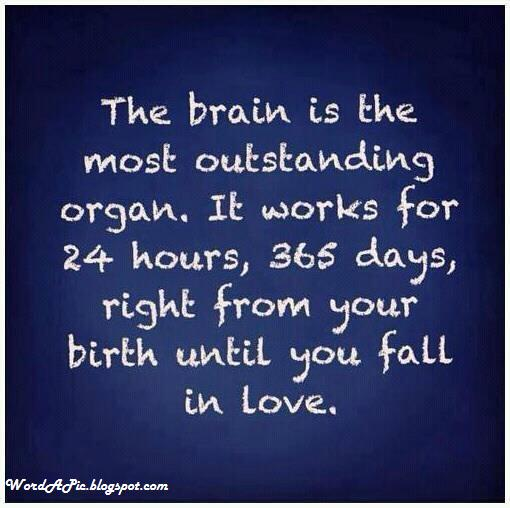 Pics With Words: The Brain Stops When You Fall In Love