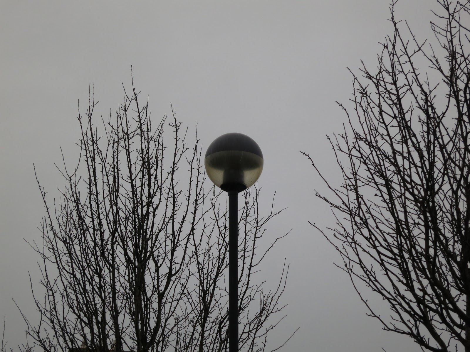 Lampost and trees silhouetted against grey sky.