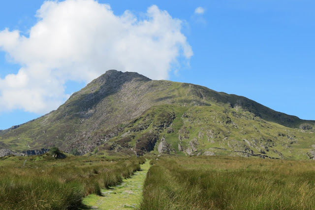 A straight path through coarse grass with the summit of Moel Siabod dead ahead.
