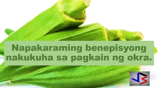 11 Reasons Why You Should Eat Okra for Good Health