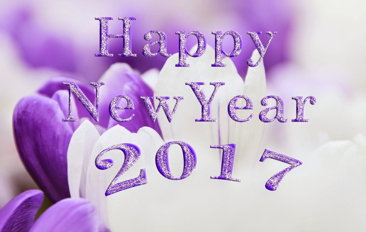 Best Happy New Year 2017 Live Wallpaper Free Download