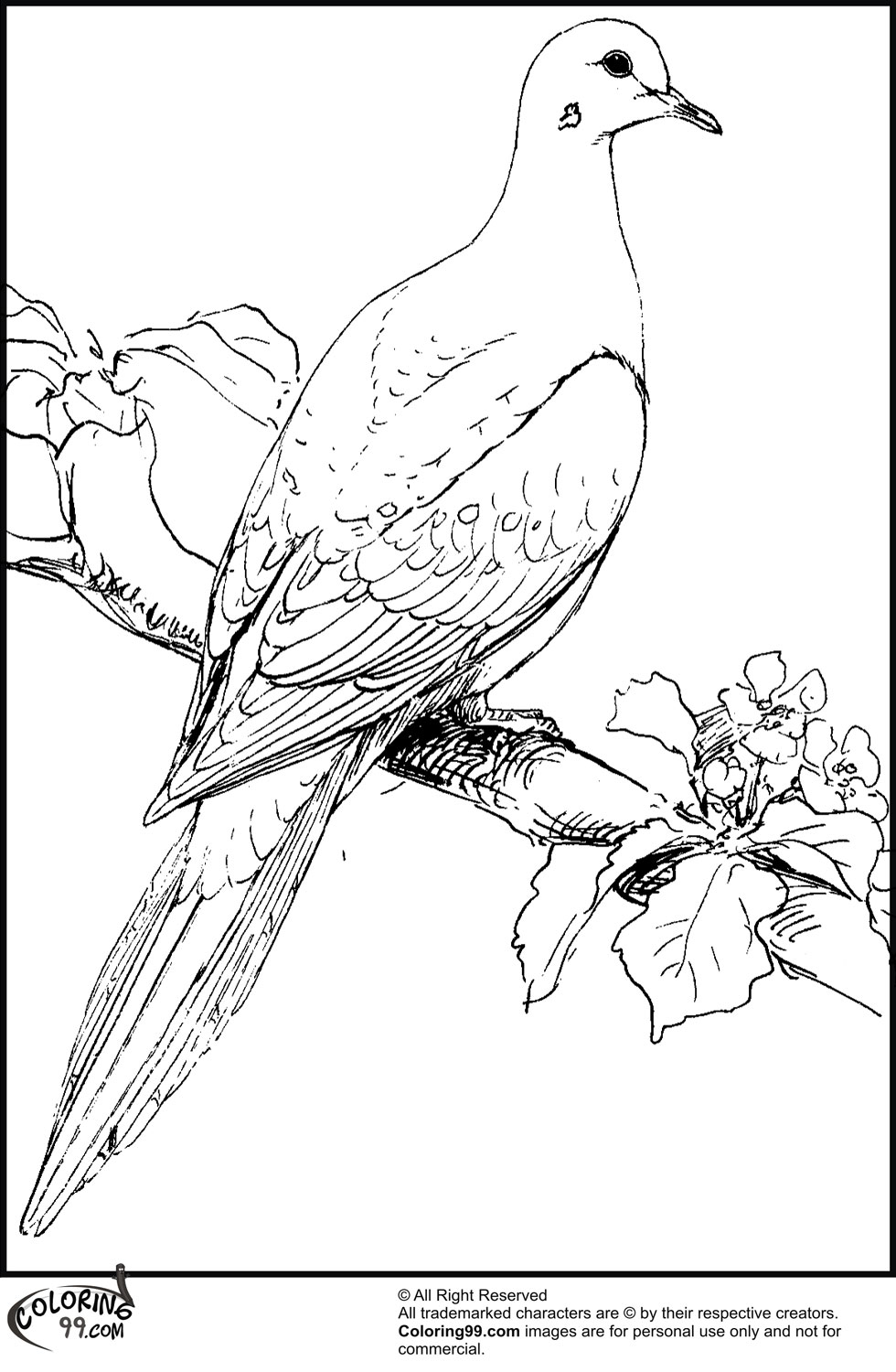 This is a photo of Bright Dove Coloring Pages