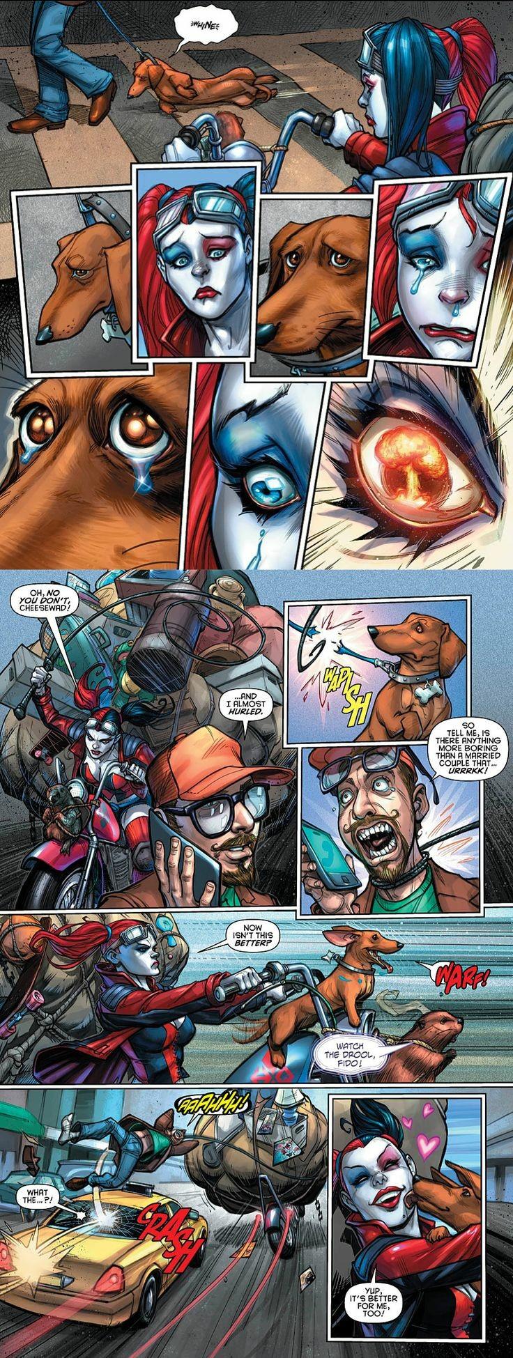 Harley Saves Doggo