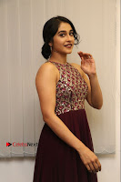 Actress Regina Candra Latest Stills in Maroon Long Dress at Saravanan Irukka Bayamaen Movie Success Meet .COM 0013.jpg