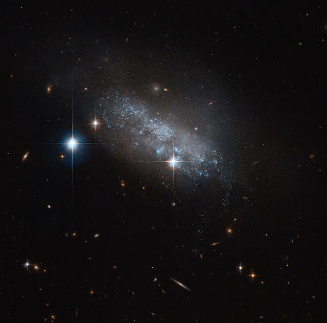 IC 3583 Galaxy