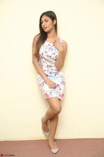 Nishi Ganda stunning cute in Flower Print short dress at Tick Tack Movie Press Meet March 2017 186.JPG