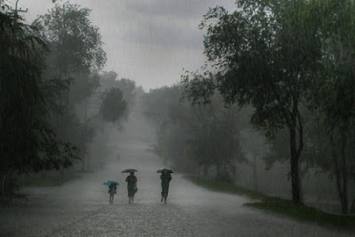 maiduguri borno state first rainfall