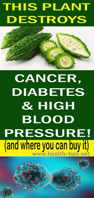 This plant destroys Cancer, Diabetes And High Blood Pressure!#NATURALREMEDIES
