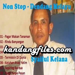 Syaiful Kelana - Pagar Makan Tanaman (Full Album)