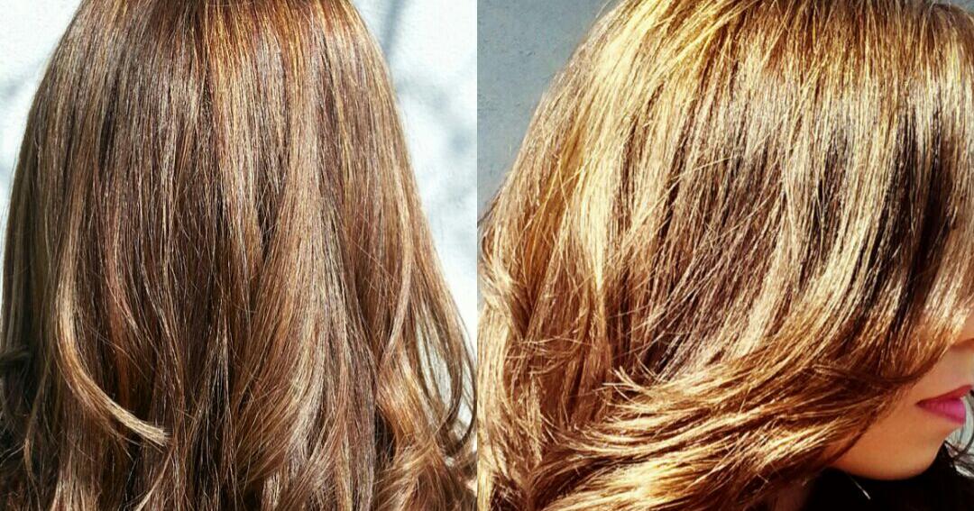 camomille et les cheveux
