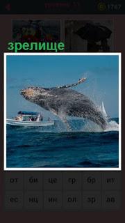 из воды выскочила громадная рыба кит, зрелище для людей в лодке