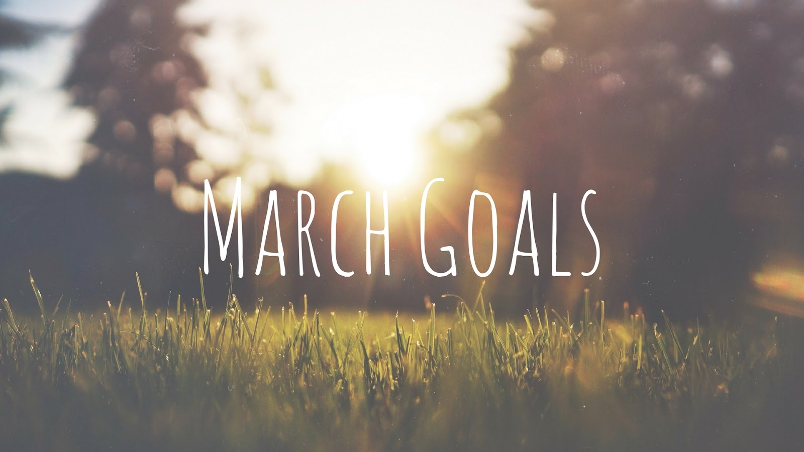 holiday, goals, target, lifestyle, fitness, spring, birthday, fundraising, charity, sponsor