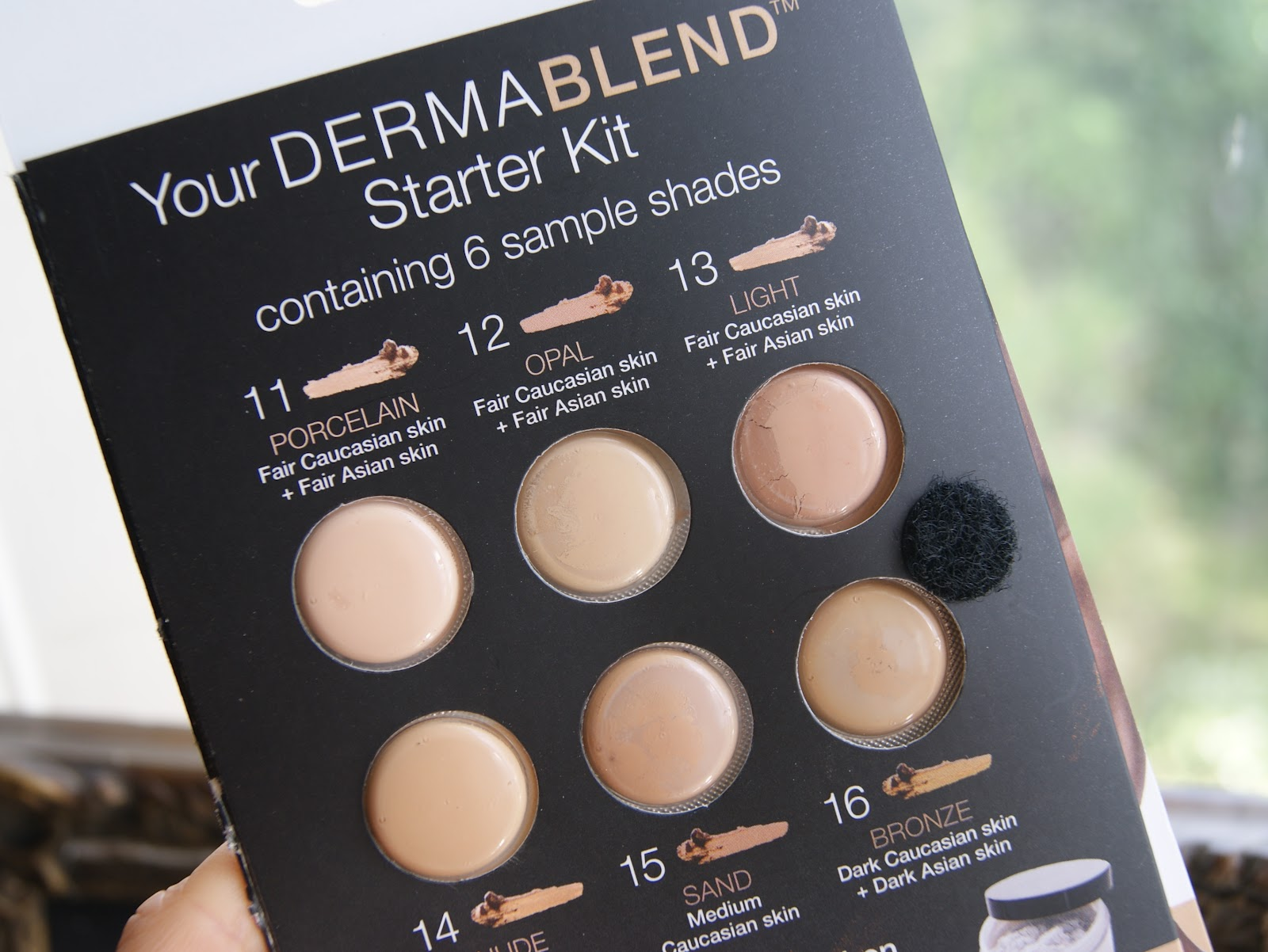 Dermablend sample kit