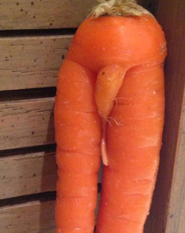 zanahoria en forma de pene