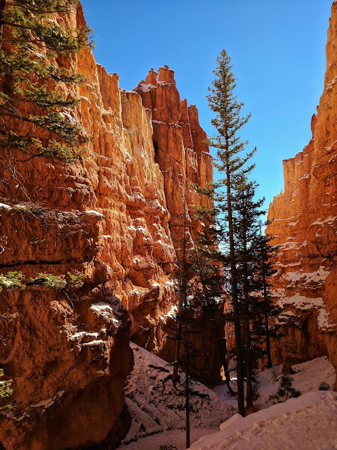 Navajo Loop Trail Bryce Canyon