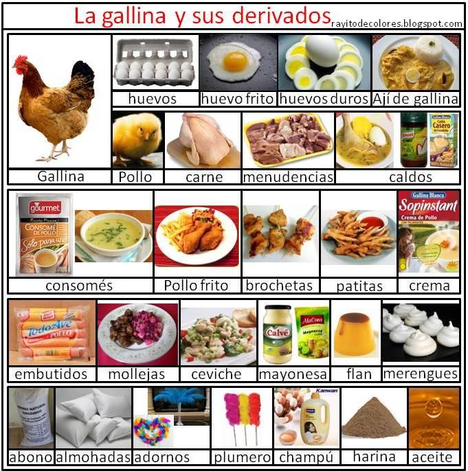 los derivados de la gallina imagenes