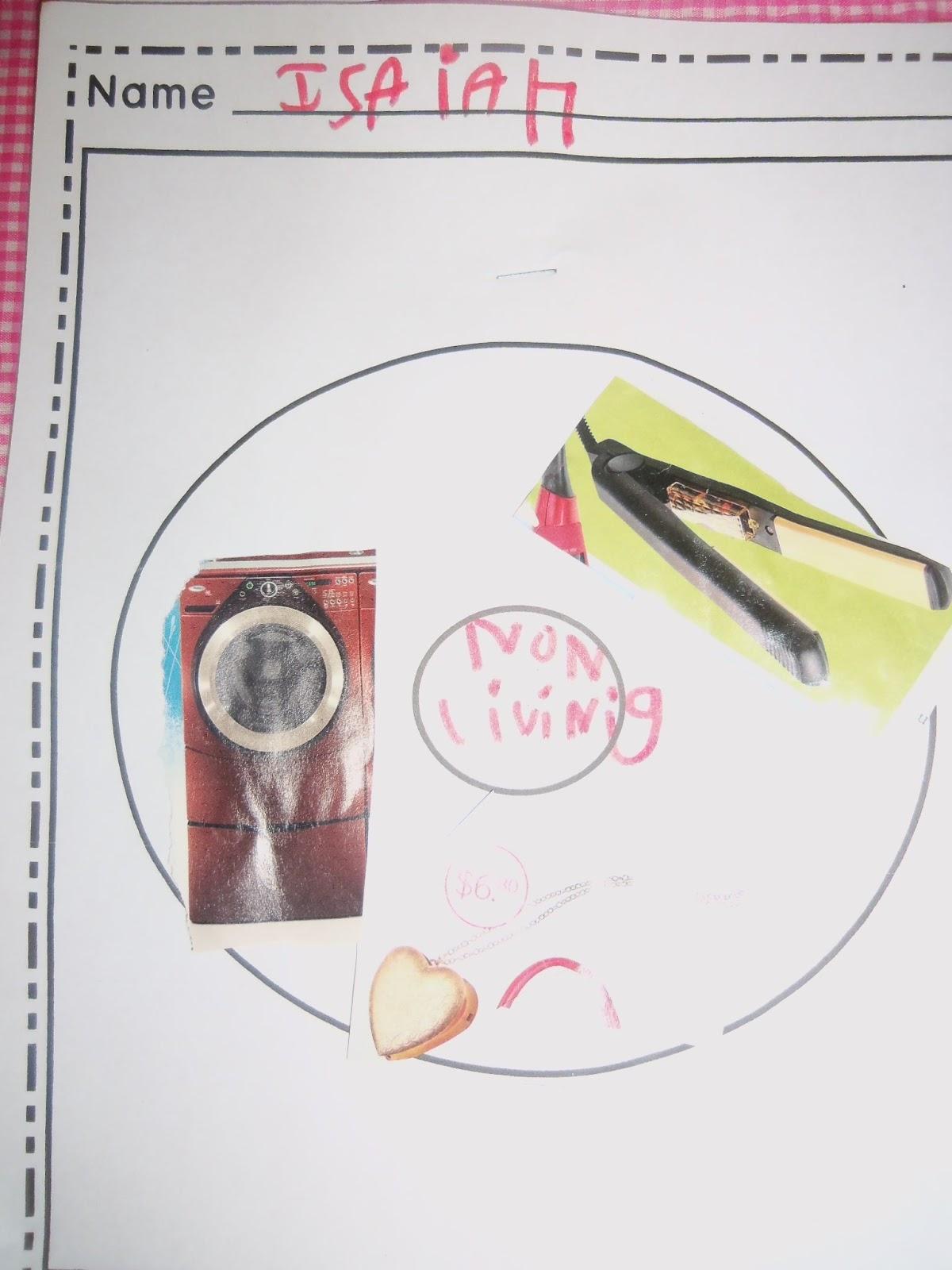 medium resolution of mrs woods kindergarten class living non living