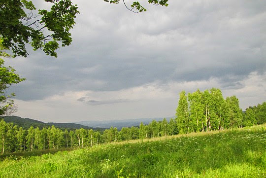 Hutnicza Górka. Widok na północny wschód.