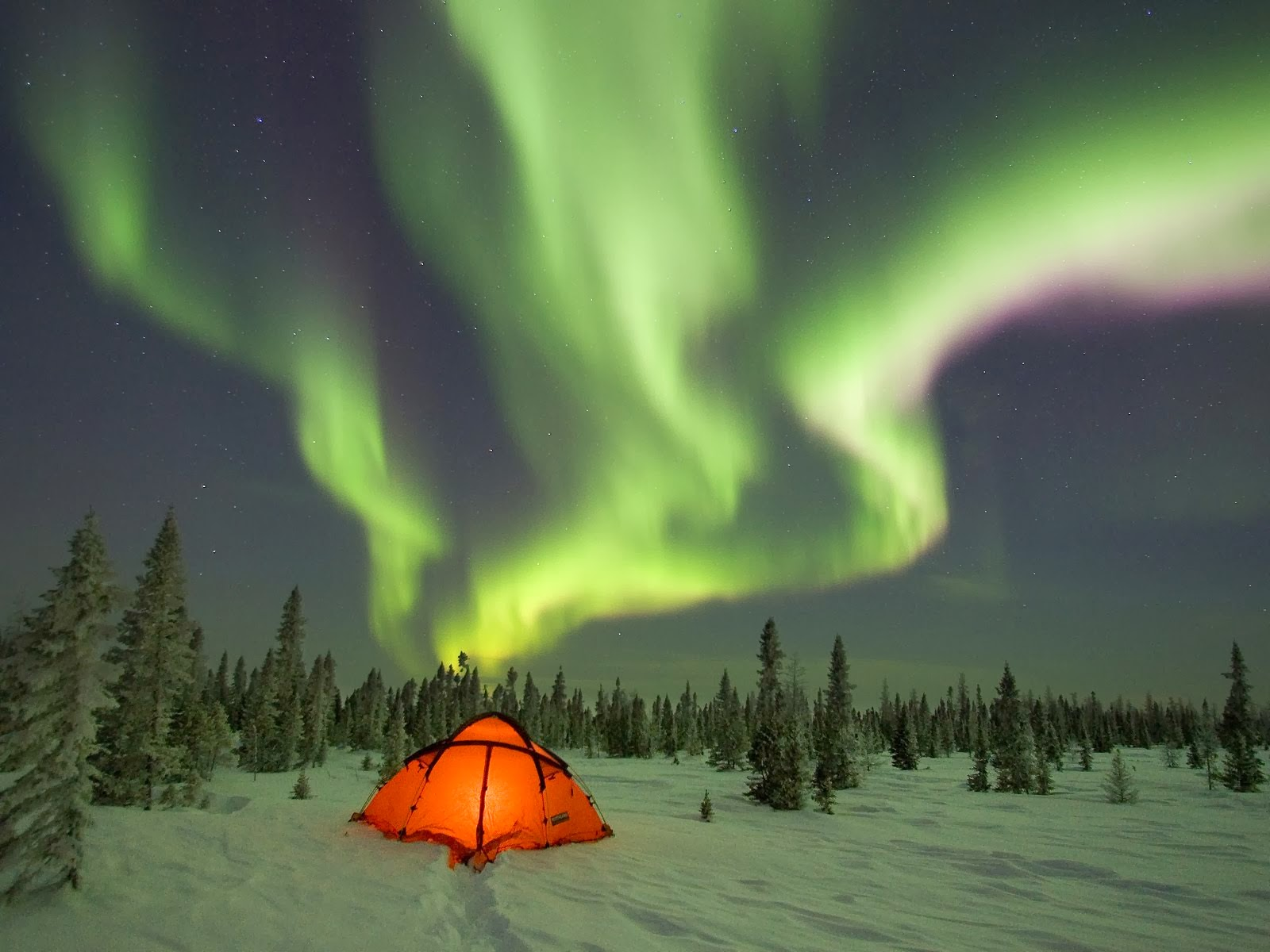 Best Places to See Northern Lights in Scandinavia