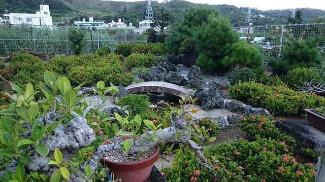 畑人のそば家  くわっちぃやーの庭園の写真