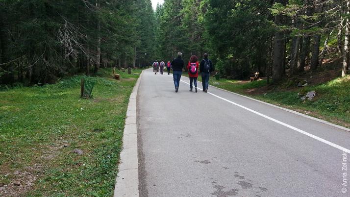 Туристы направляются к Черному озеру, Черногория