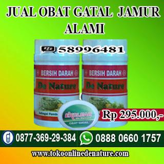 JUAL OBAT GATAL JAMUR ALAMI