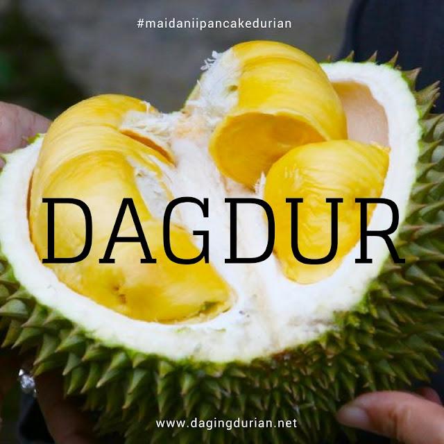 reseller-daging-durian-medan-ternikmat-di-wamena